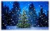 «Сказочный снегопад»