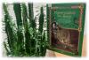«Заходи в зелёный дом – чудеса увидишь в нём!»
